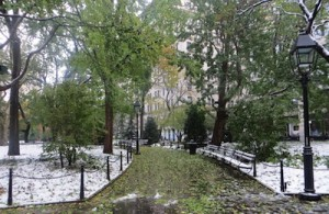 I like the contrast of the greenery and the white of the snow