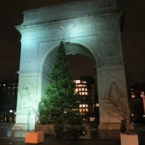 Washington Square's 2012 Christmas Tree at the Arch (This is one Tall Tree!)