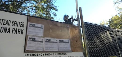 Squirrel Atop Construction Fence WS South