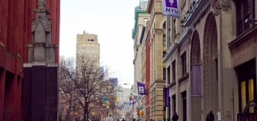 A corridor of purple flags along the park