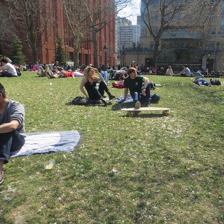 feathered_lawn_pillow_fight_day_washington_square
