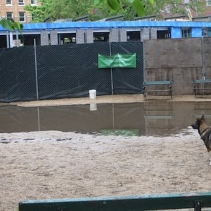 New Relocated 24 Hour Large Dog Run at Washington Sq Park Will Open End of May Along Washington Square South | Existing Large Dog Run Continues to Flood After Rain
