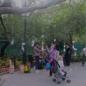 tree_emotions_stories_washington_square_park_project