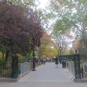 Fall at the Park, SouthWest Entrance (+ a Note Re: Private Conservancy Watch — More News Coming)