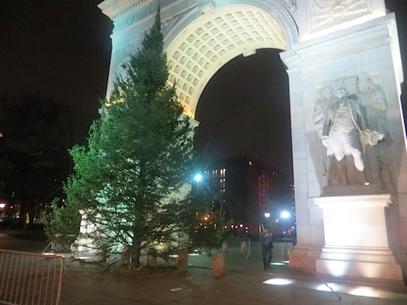 christmas_tree_unadorned_washington_square_park_at_the_arch_2013