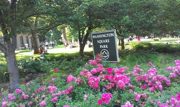 washington_square_park_sign_flowers_summer_2014_1