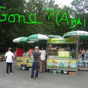 food_vendors_now_gone_washington_square_park