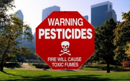 pesticides_new_york-263x164