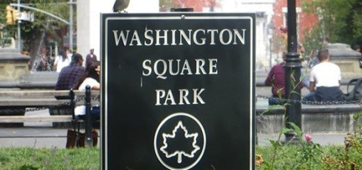 sparrow_washington_square_park_sign