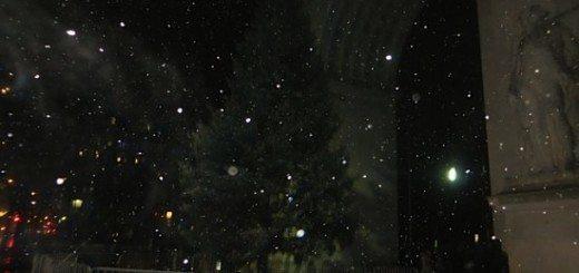 christmas_tree_lighting_2014_washington_square_park