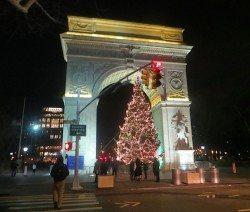 washington_square_christmas_tree_2014_1
