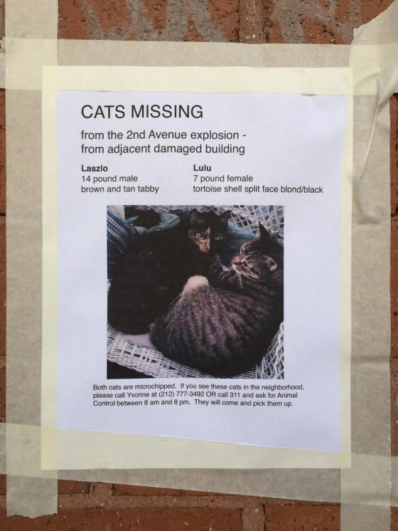 Laszlo and Lulu, missing East Village explosion
