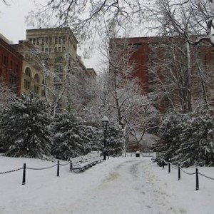 Washington Square: Wintry Perfection in the Snow – Plus NYPD Trailer Moved, Mounds Off-Limits