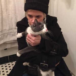 4 Cats Found in Rescue Efforts in Aftermath of East Village Explosion, 4 Cats, 1 Dog Still Missing