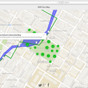 Track the Buried Minetta Creek in Greenwich Village, Washington Square Park Trees with WSP Eco-Map