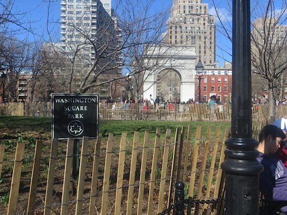 washington_square_park_sign_lawn_reseeding_spring