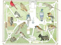 World Science Festival: All Day Events + Map Wildlife in Washington Sq Park Sunday, May 31st
