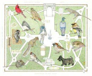 washington square park map natural inhabitants humans and wildlife