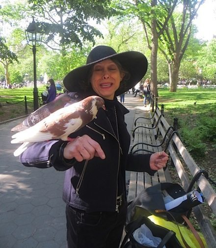 Susan Goren washington square park pigeon
