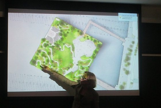Madelyn Wills, Hudson River Park Trust president, before CB2 earlier this month