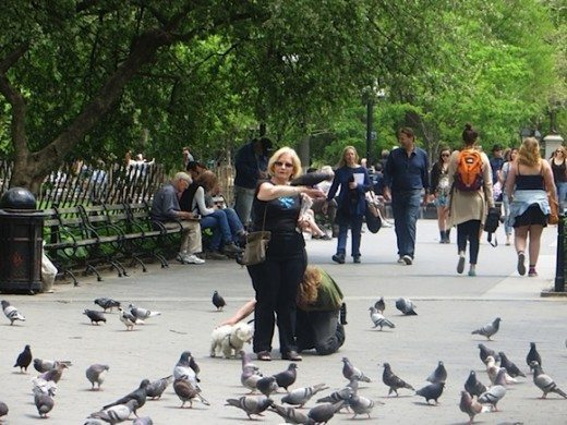 Lady with pigeons 2014 (Larry in background)