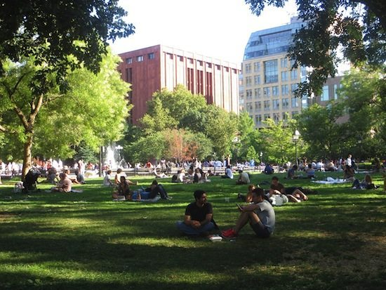 lawn-washington-square-park-summer