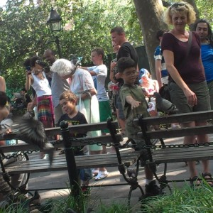 More Coverage of Washington Square Bird-Napping | Witnesses to Nettings Sought