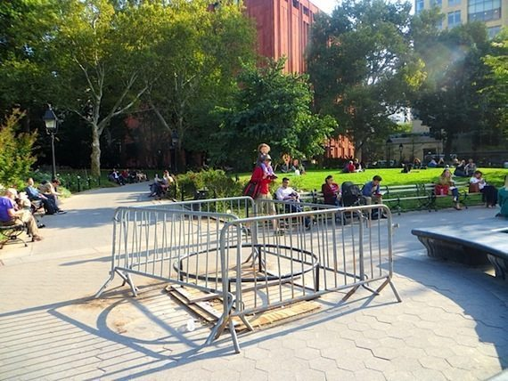 missing-tree-pit-washington-square-park-1