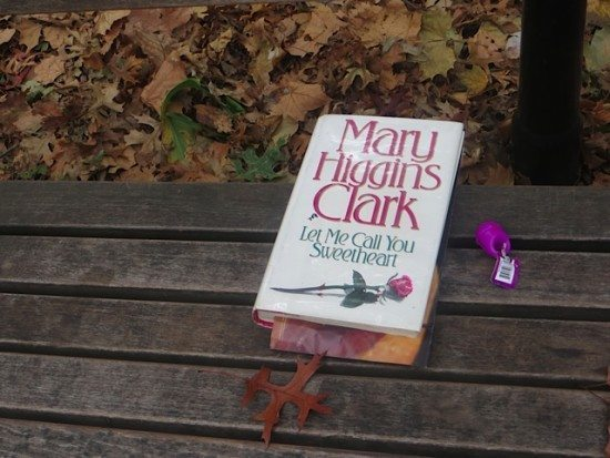 mary-higgins-clark-fall-park-bench-washington-square