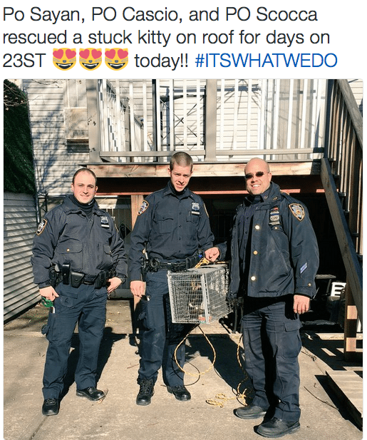 114 Precinct NYPD Twitter on cat rescue Astoria trapped roof