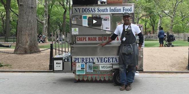 New York Dosas Washington Square Park