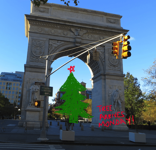 washington square park christmas tree arrives monday