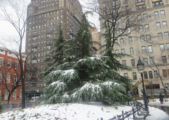 evergreen-snow-washington-square-park-north-9