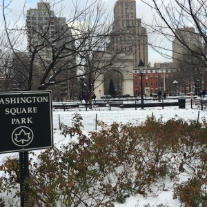 washington-square-park-snow-2016-arch-christmas-tree-1