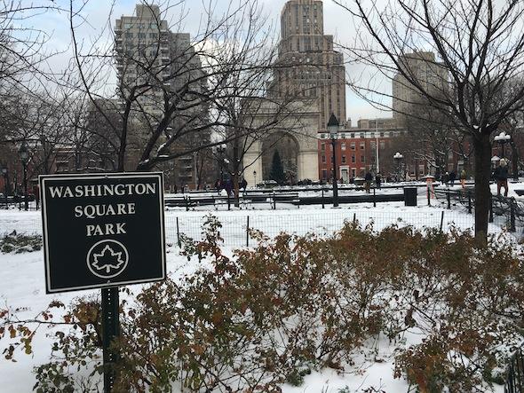washington-square-park-snow-2016-arch-christmas-tree-1