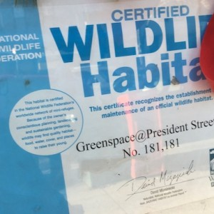 certified-wildlife-habitat-park-slope-2
