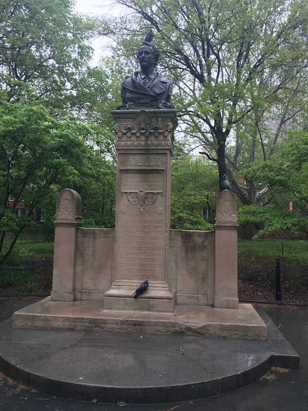 pigeons-alexander-holley-washington-square-park-10
