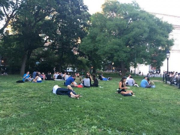 washington square park lawn summer 1