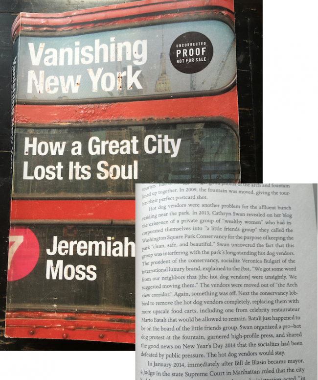 vanishing new york book washington square park controversies