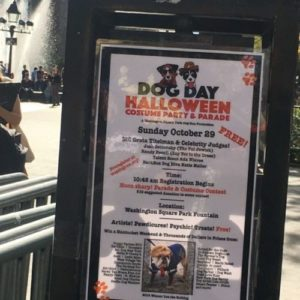 It's a Dog's World Sunday at Washington Square Park as Annual Dogs' Halloween Costume Party and Parade Takes Over Fountain Plaza
