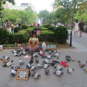 "Artistic ""Flashflock"" at the Park! Tina Piña Trachtenburg & ""300 Pigeons of Peace"" at Washington Square Saty Oct 21"