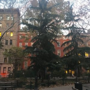 The Latest, Late Fall Washington Square Park in Photos
