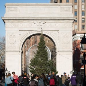 Tree Lighting & December Events at Washington Square Park