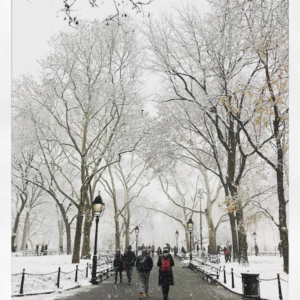 First Snow of the Season ** Washington Square Park