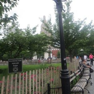 Woman Found Unconscious on Washington Square Park Bench Later Died