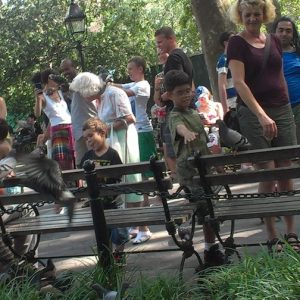 NYC Parks Department is Considering Ban on Feeding Wildlife – Public Hearing March 1st