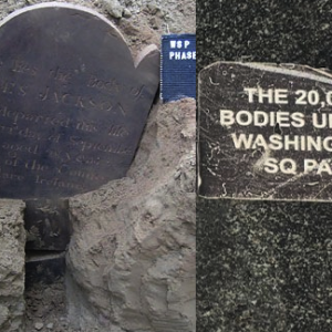 Where Will the Bones go? Reburial of Human Remains Dug up During Washington Square Park Redesign Work, (Some) Plans Revealed