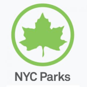 NYC Parks Department Statement on Recent Arrest of Artist Oriel at Washington Square Park